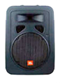 "10"" 2-Way Speaker/Stage Monitor"